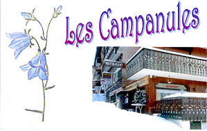 campanules.jpg